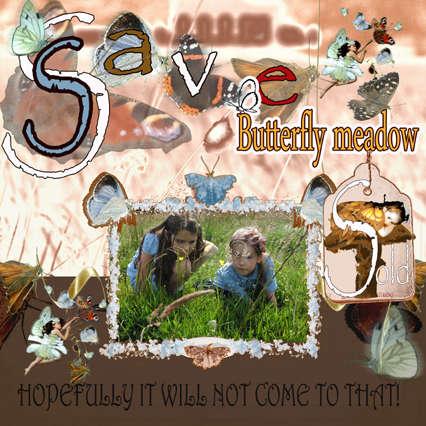 Butterfly Meadow save school field and butterflies