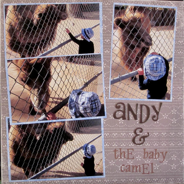 Andy and the Baby Camel