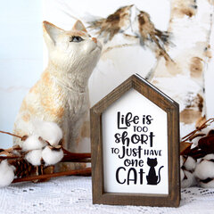 Life Is Too Short To Just Have One Cat - Jillibean Soup
