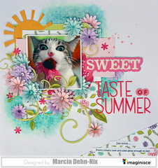 Sweet Taste of Summer