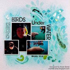 Birds Under Water Manatee layout