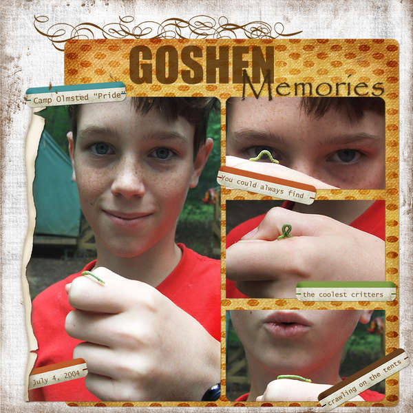 Goshen Memories **Digital**