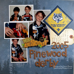 2005 Pinewood Derby **Paper House**