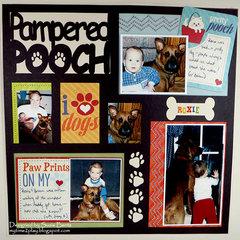 Pampered Pooch