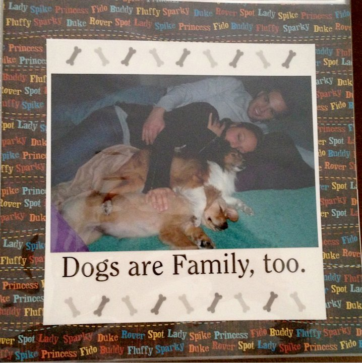 Dogs Are Family Too!