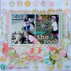 Feeding the Roos by Amy Prior