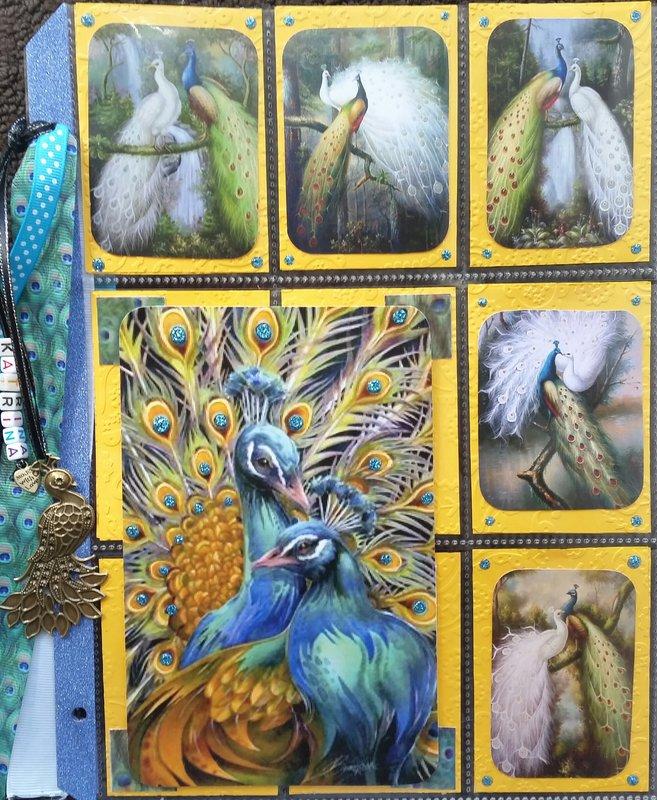 Peacock pocket letter