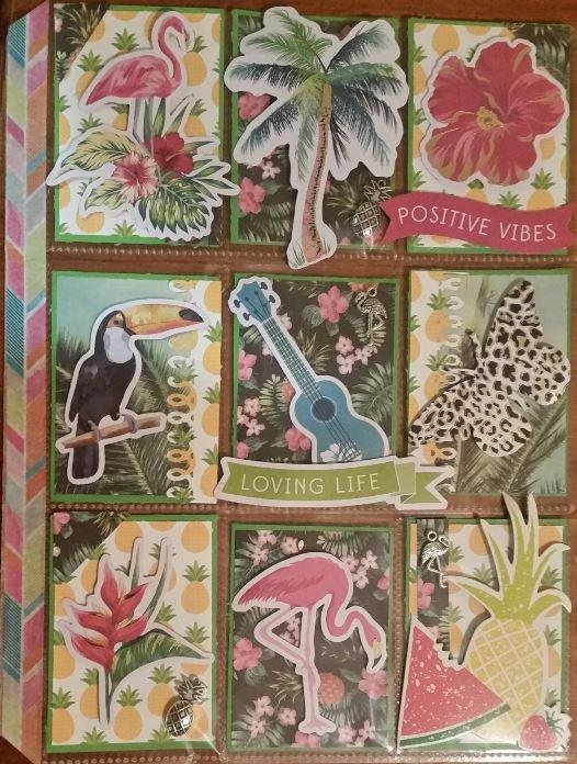 Tropical / Pineapple Pocketletter