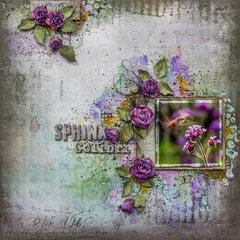 Sphinx Colibri - Mixed Media Place DT