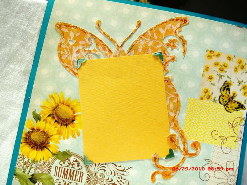 Beautiful Butterflies pages