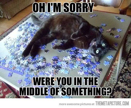 Oh I'm sorry!
