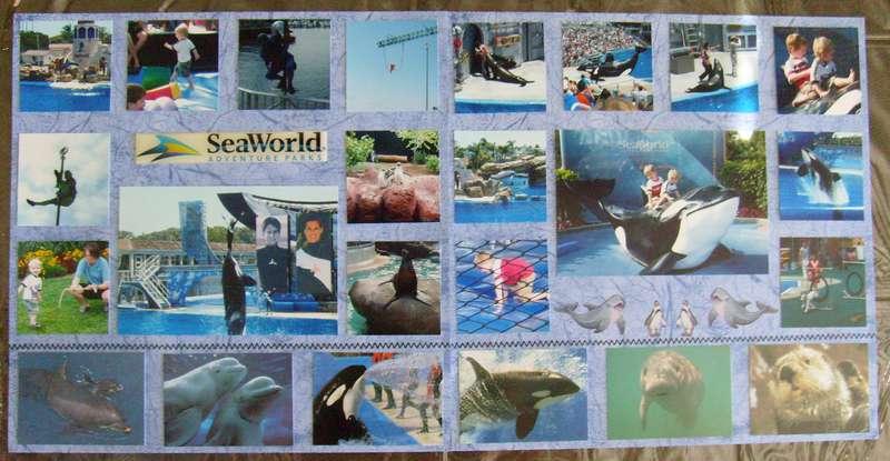 Sea World Collage