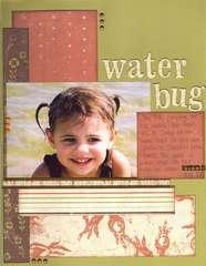 Water Bug