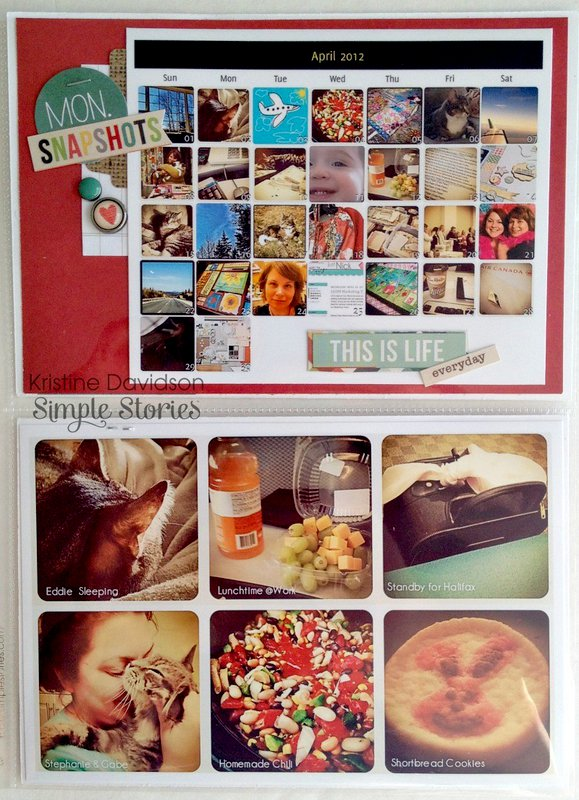 Life Documented *Simple Stories*