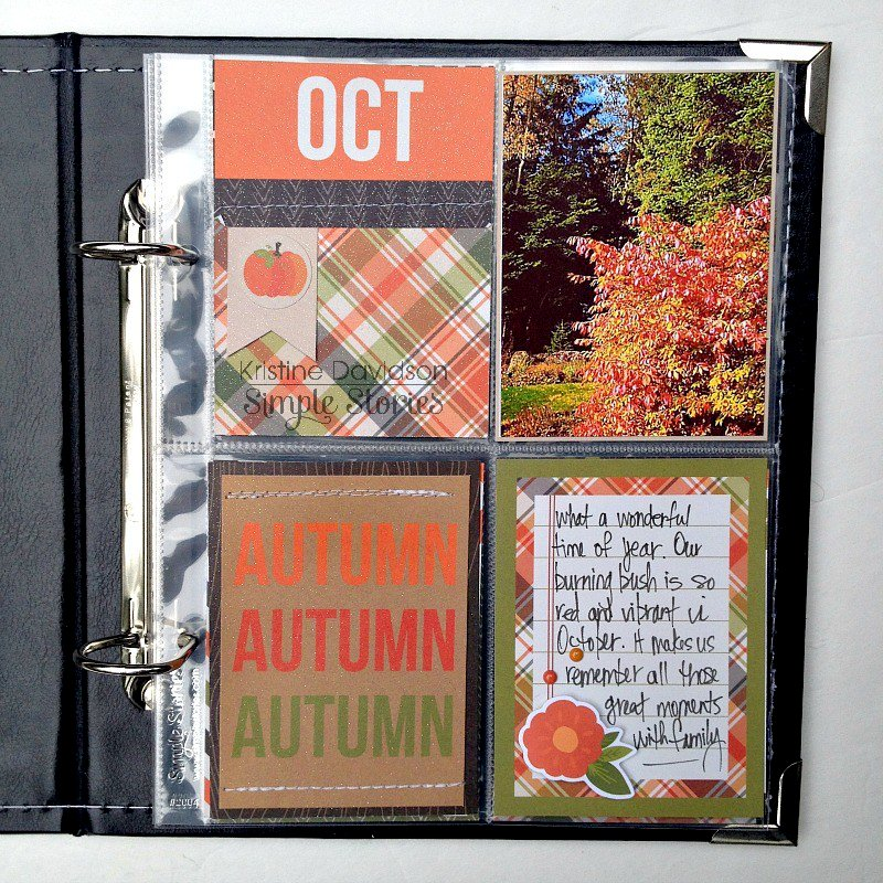 Life Documented   Oct 2012