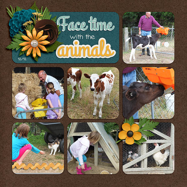 Facetime with the animals(1)
