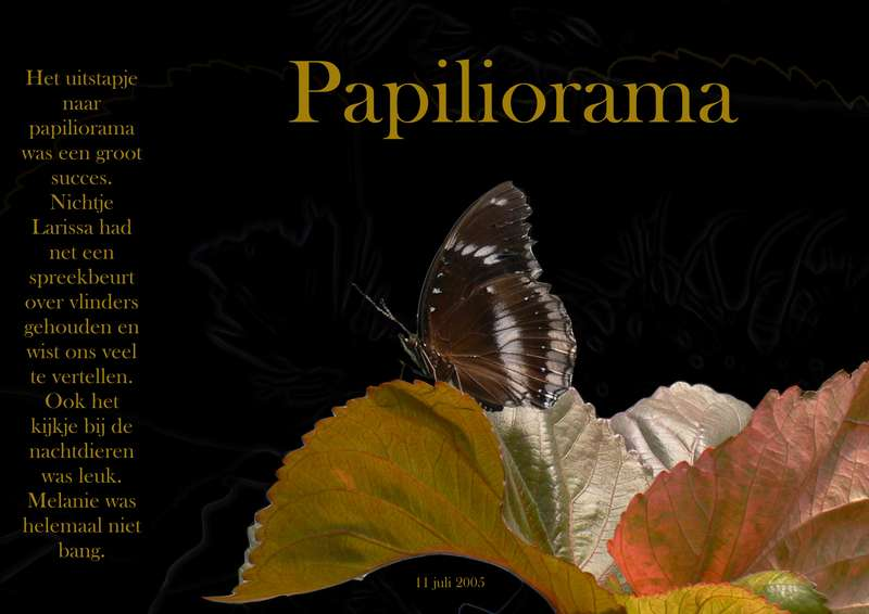 Papiliorama ( butterfly )