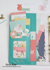 Today Posh Planner Pocket