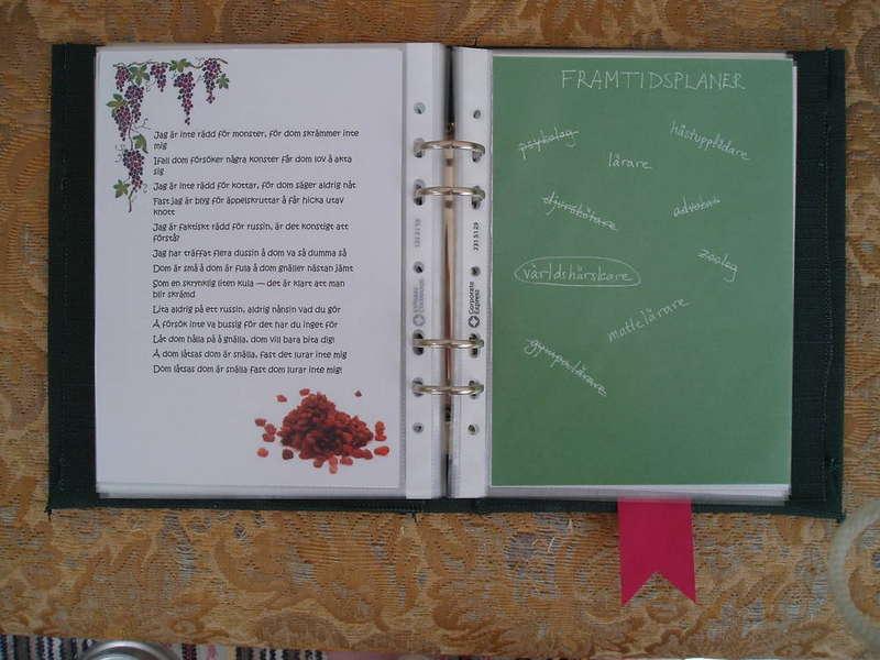 Graduation album: Raisins & Future plans
