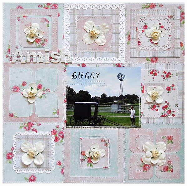 33.Amish Buggy