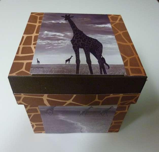 PHOTO BURST BOX