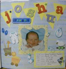 Josh's Birth