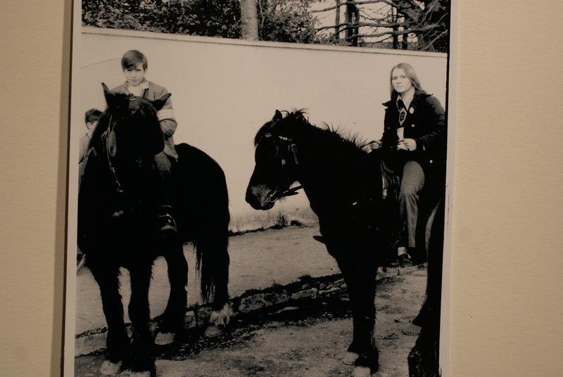 Connamera Ponies