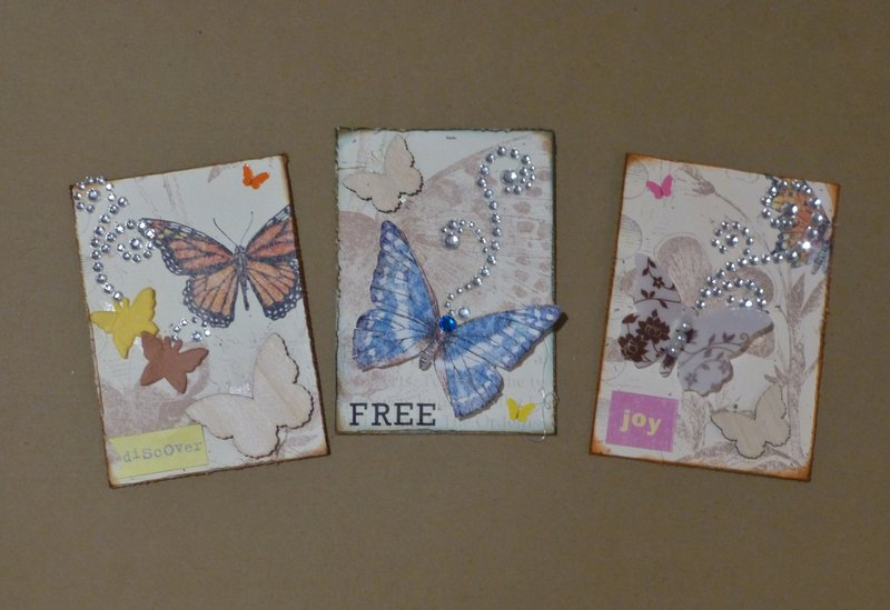 ATC-Pretty Bugs-Butterflies