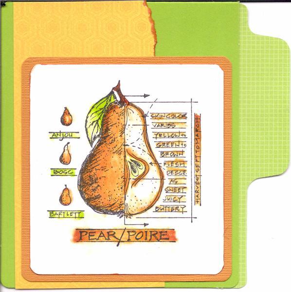 Pear/Poire