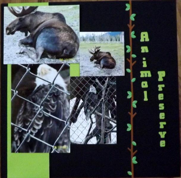 Animal Preserve