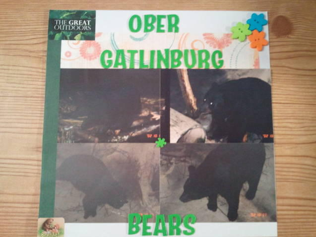 Ober Gatlinburg Bears