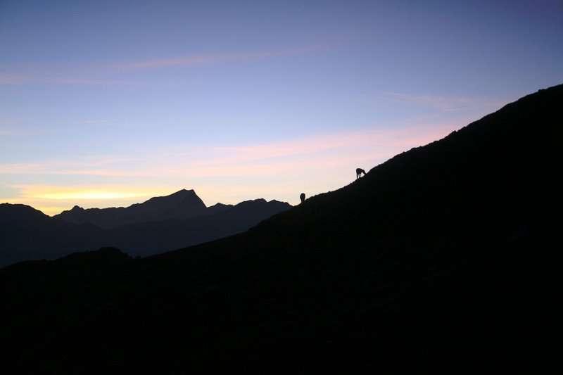 khaliya view