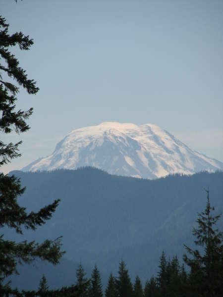 Mt. Adams, from Mt. Rainier at Box Canyon