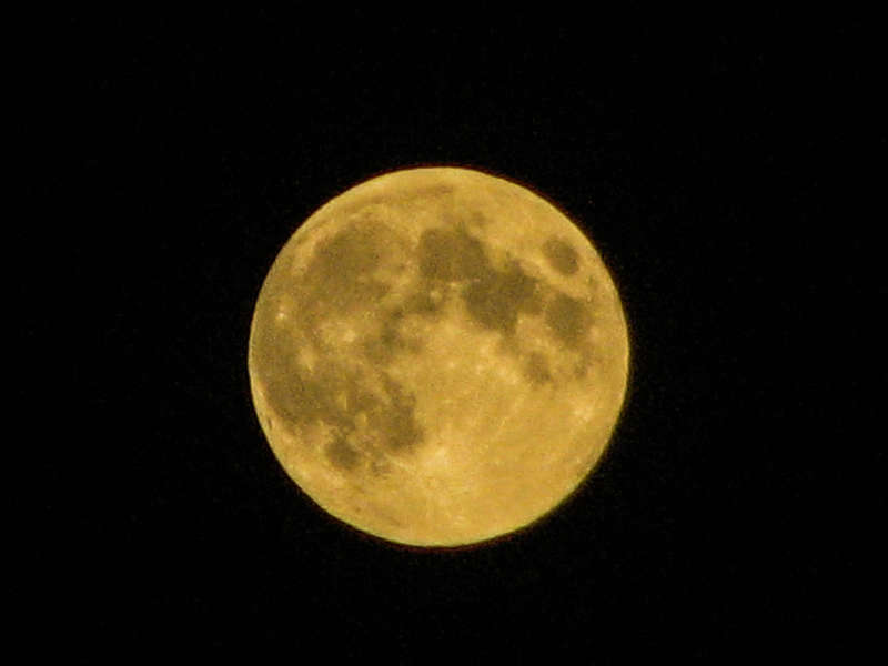 Incredible Harvest Moon