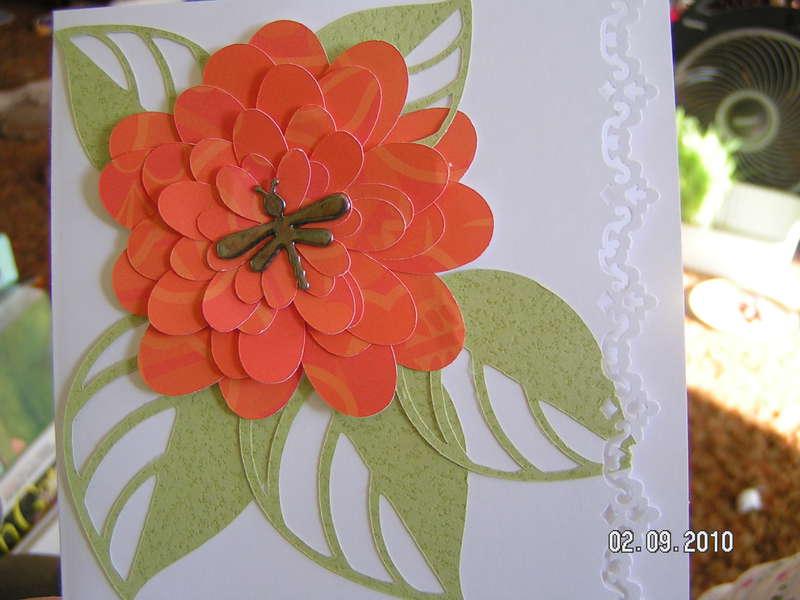 Orange Spring Flower