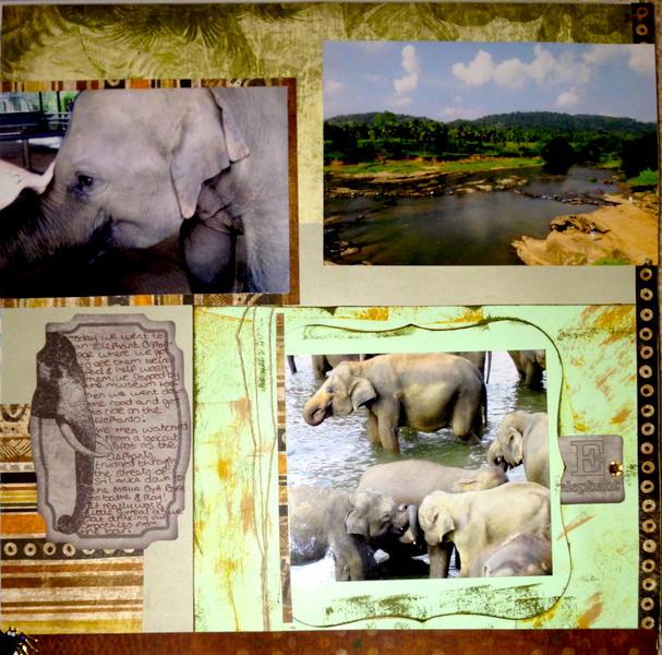 Elephant Adventure 2