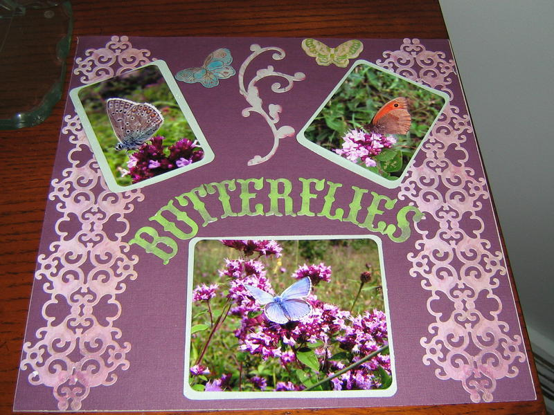 Butterfilies