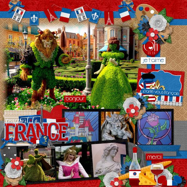 Passport to France