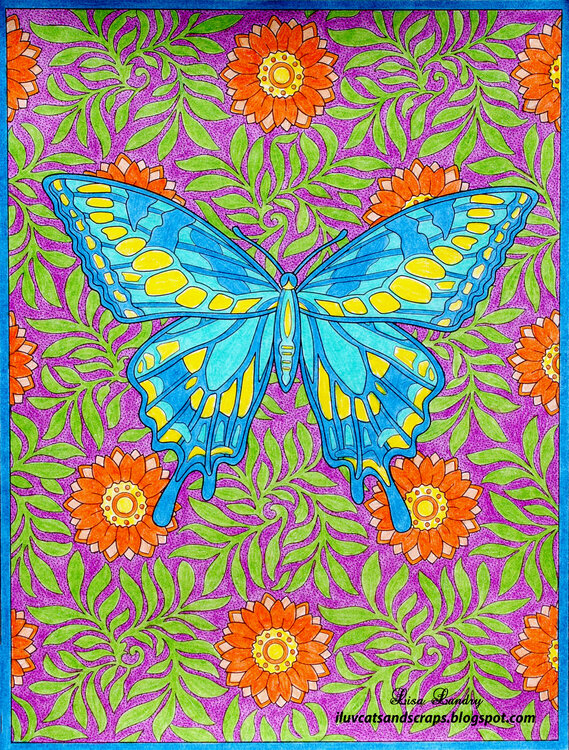 Pencil Coloring - Butterfly1