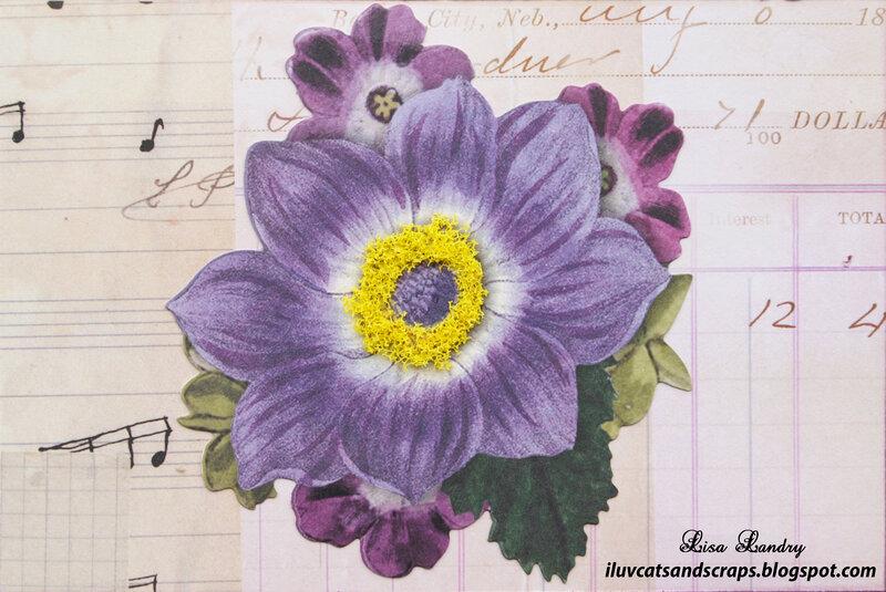 "K&Company - Flora & Fauna 4"" x 6"" Cards"