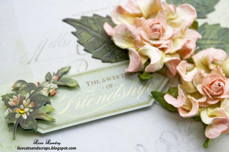 "K&Company - Flora & Fauna - 6"" X 6"" Cards"
