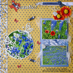 Texas beauties ~ Bluebonnets & Firewheels