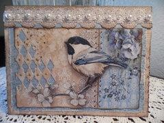 Bird-a-licious