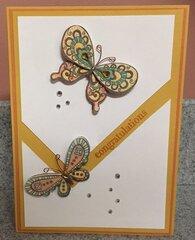 Butterfly Congrats
