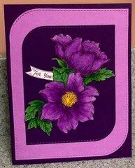 Colors Of Purple