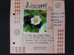 page 5 - discover