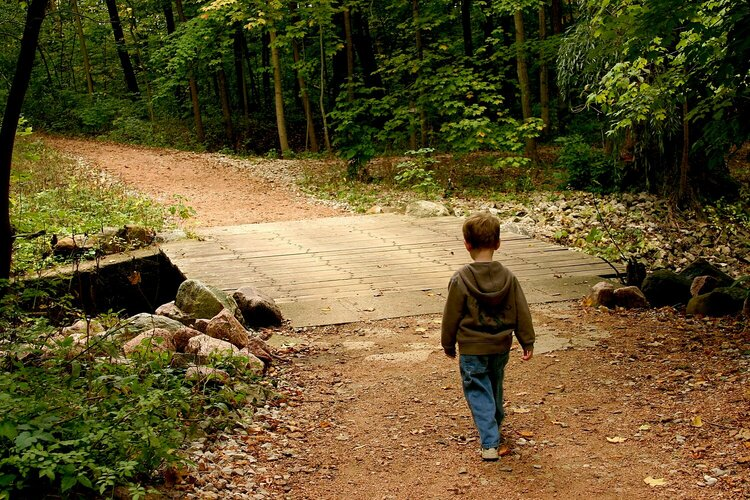 Photo Hunt....A Bridge