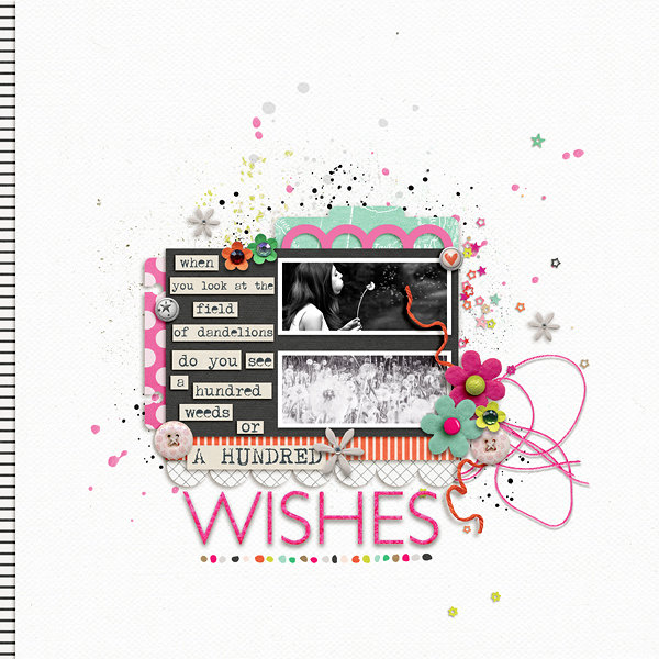 A Hundred Wishes