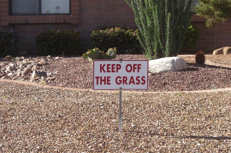 Arizona Humor Mini #5