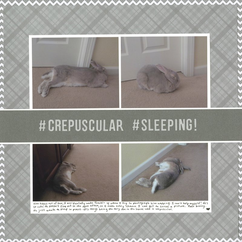 #Crepuscular